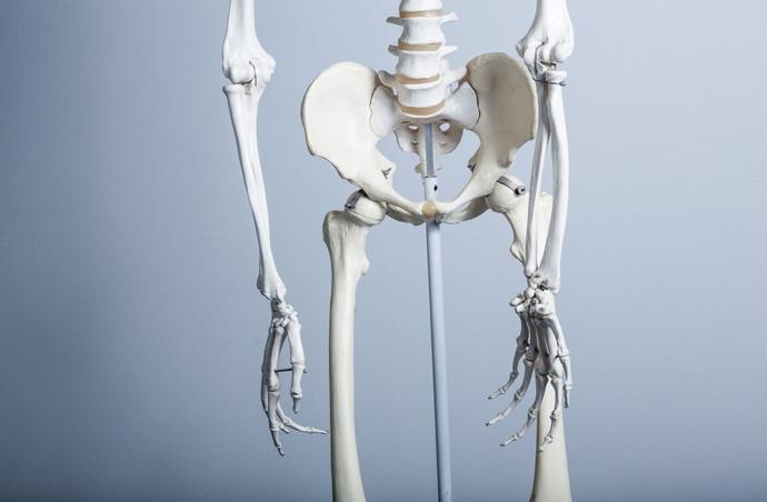 膝 内側 痛み 運動 ストレッチ